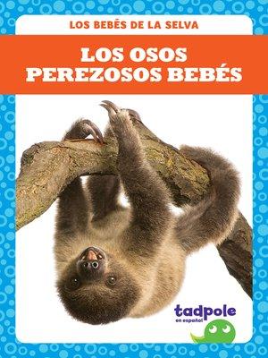 cover image of Los osos perezosos bebés (Sloth Babies)