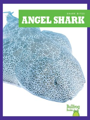 cover image of Angel Shark