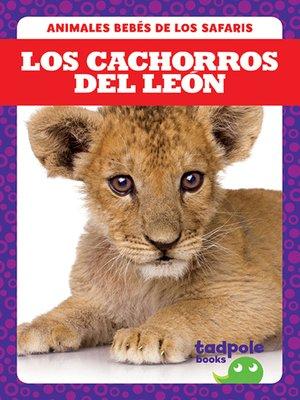 cover image of Los cachorros del león (Lion Cubs)