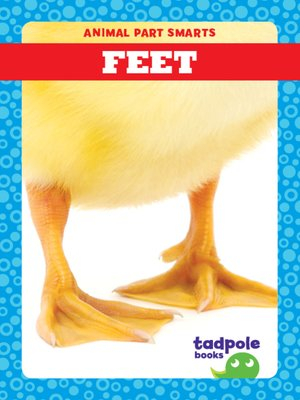 cover image of Feet