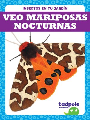 cover image of Veo mariposas nocturnas (I See Moths)