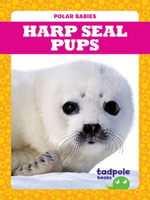 cover image of Harp Seal Pups