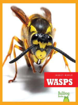 cover image of Wasps