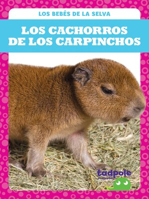cover image of Los cachorros de los carpinchos (Capybara Pups)