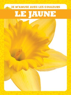 cover image of Le jaune (Yellow)