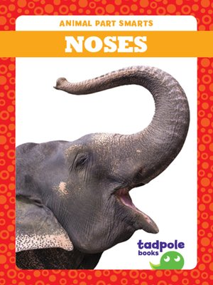 cover image of Noses