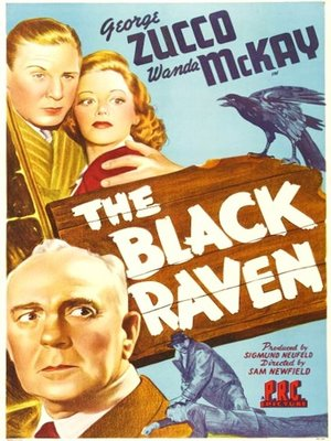 cover image of Black Raven