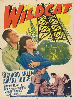 cover image of Wildcat