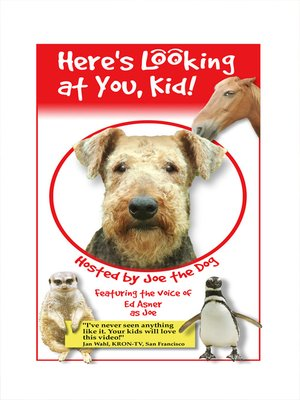 cover image of Here's Looking at You Kid
