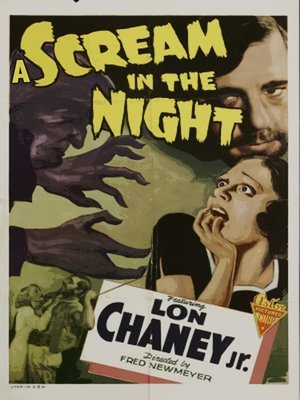 cover image of A Scream in the Night