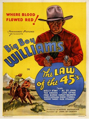 cover image of Law Of The 45's