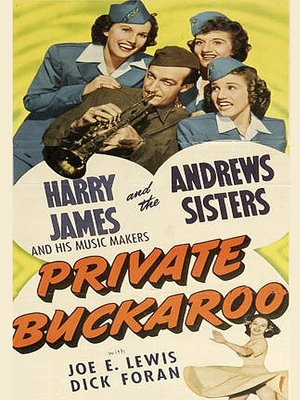 cover image of Private Buckaroo