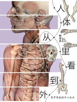 cover image of 人体从里看到外