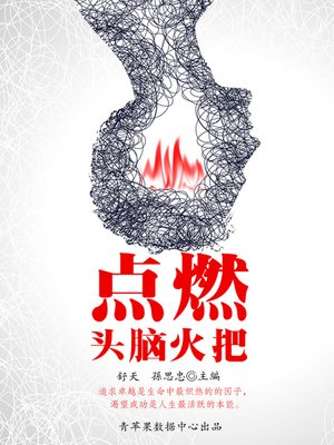 cover image of 点燃头脑火把