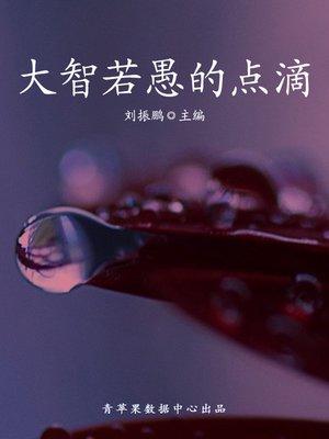 cover image of 大智若愚的点滴