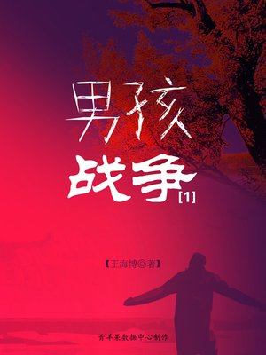 cover image of 男孩战争1