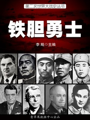 cover image of 铁胆勇士