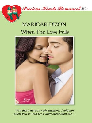 cover image of When the Love Falls