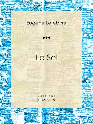 cover image of Le sel