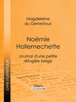 cover image of Noémie Hollemechette