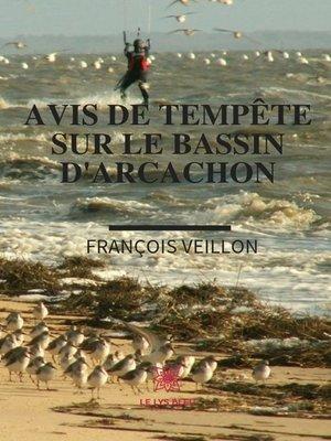 cover image of Avis de tempête sur le bassin d'Arcachon