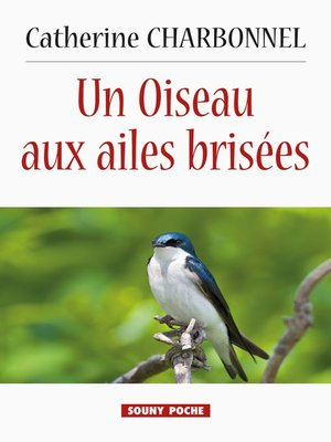 cover image of Un Oiseau aux ailes brisées