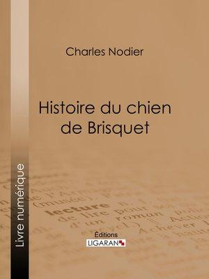 cover image of Histoire du chien de Brisquet
