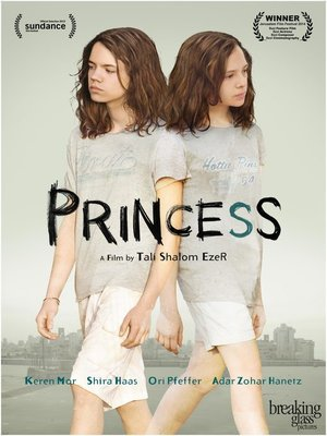 cover image of Princess