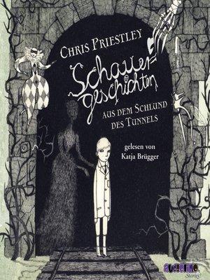 cover image of Schauergeschichten aus dem Schlund des Tunnels--Schauergeschichten 3