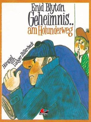 cover image of Enid Blyton, Geheimnis am Holunderweg
