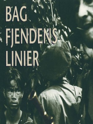 cover image of Bag fjendens linier