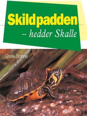 cover image of Skildpadden--hedder Skalle