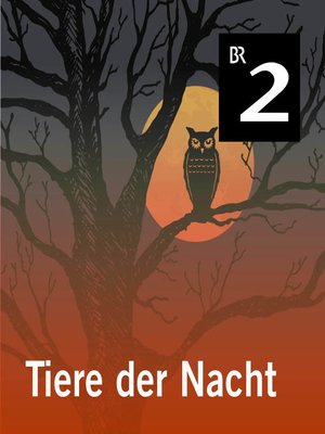 cover image of Tiere der Nacht