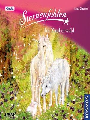 cover image of Sternenfohlen, Teil 13