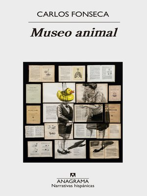 cover image of Museo animal