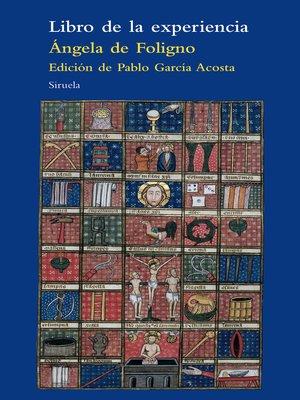 cover image of Libro de la experiencia