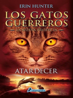 cover image of Atardecer