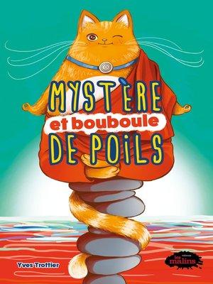 cover image of Mystère et bouboule de poils