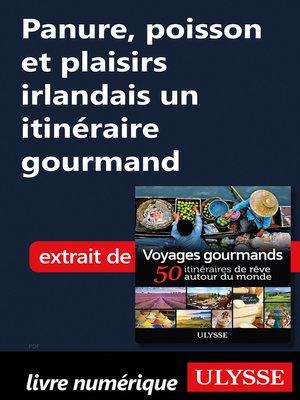 cover image of Panure, poisson et plaisirs irlandais un itinéraire gourmand