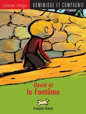 cover image of David et le Fantôme