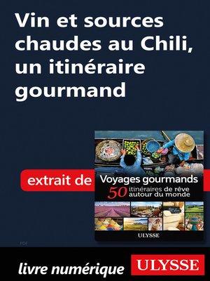 cover image of Vin et sources chaudes au Chili, un itinéraire gourmand