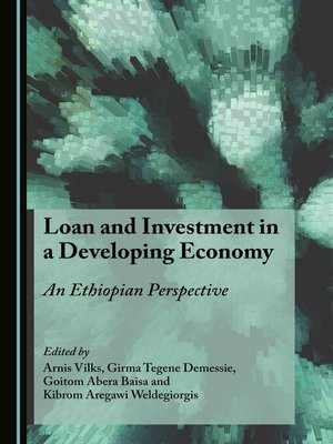 cover image of Loan and Investment in a Developing Economy
