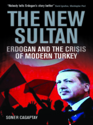 cover image of The New Sultan