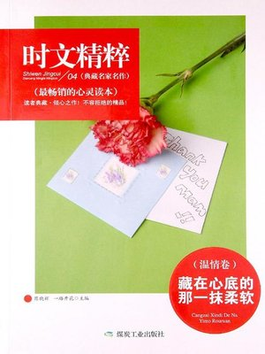 cover image of 藏在心底的那一抹柔软