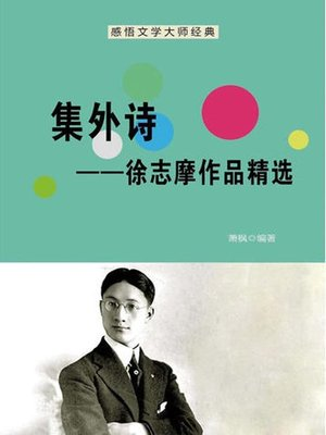 cover image of 感悟文学大师经典(Appreciating the Classics by Literary Masters)