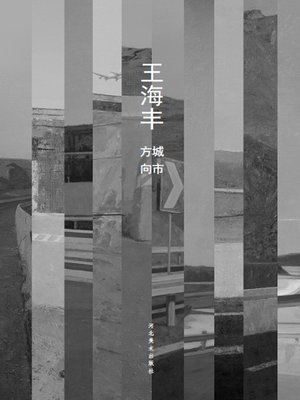 cover image of 城市方向