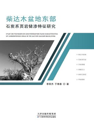 cover image of 柴达木盆地东部石炭页岩储渗特征研究