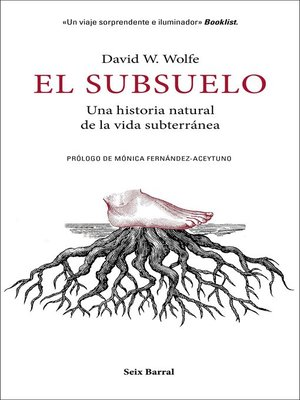 cover image of El subsuelo