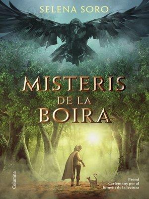 cover image of Misteris de la boira
