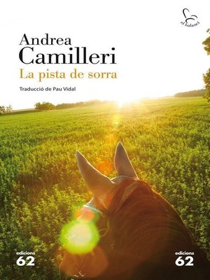 cover image of La pista de sorra